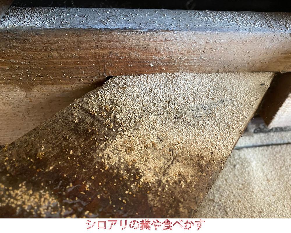 シロアリの糞、シロアリの食べかす
