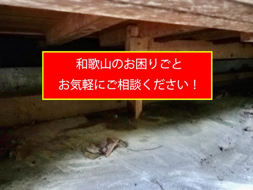 和歌山のお困りごと、お気軽にご相談ください!清掃、消毒、消臭