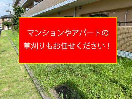 マンションやアパートの草刈りもお任せください!