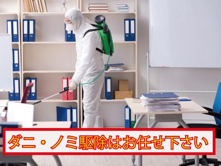 湯浅町にてダニ・ノミ害虫駆除