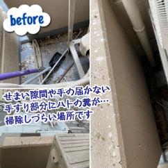 和歌山市 ハトの糞清掃.jpg