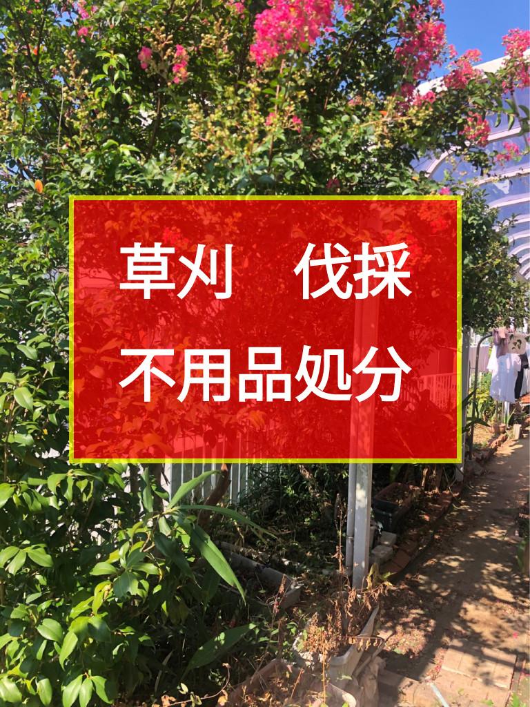 和歌山市 草刈 伐採 不用品処分