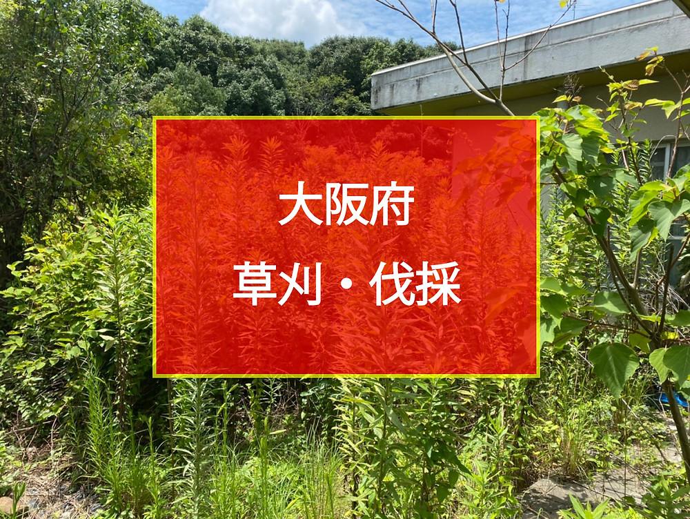 大阪府 草刈 伐採