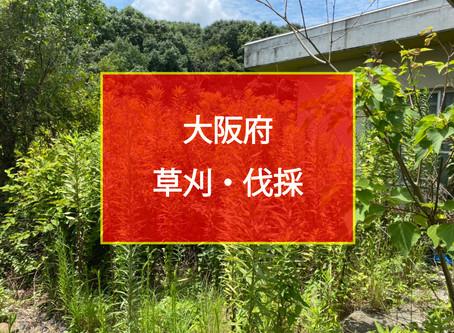 大阪府 草刈・伐採