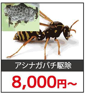 ハチ駆除料金2.jpg