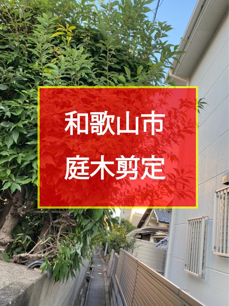 和歌山市 庭木剪定