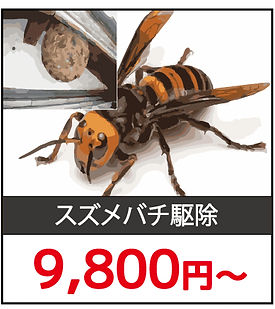 ハチ駆除料金1.jpg