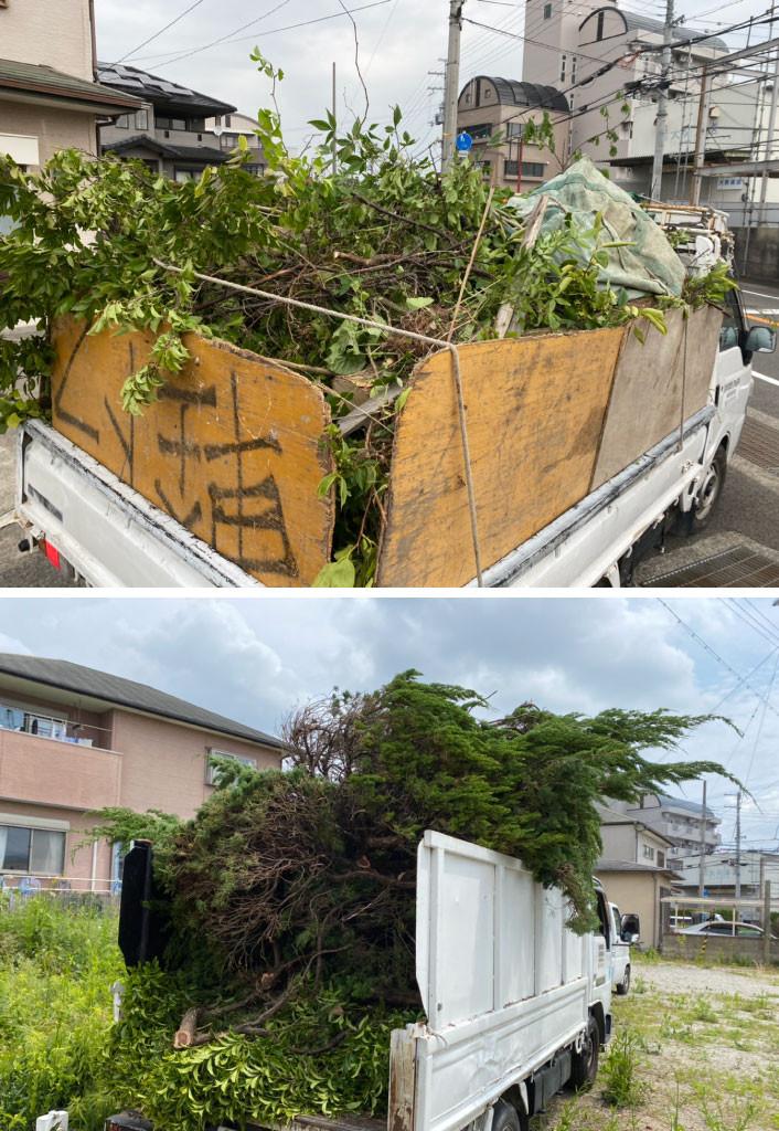 草木の処分、ごみ処分、ごみ回収