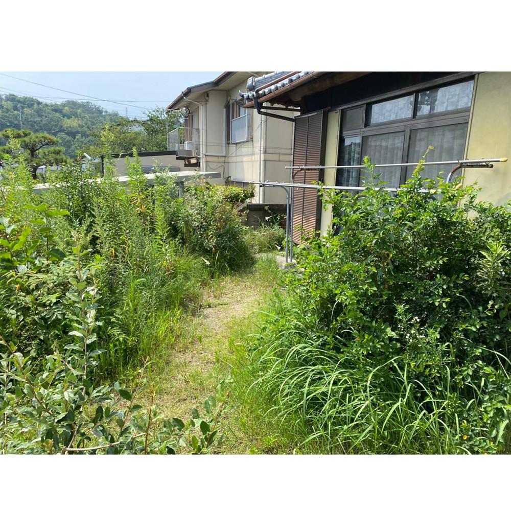 和歌山市 草刈