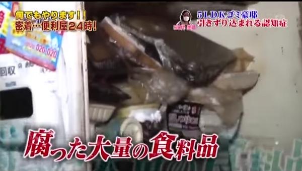 ごみ屋敷の腐った大量の食品