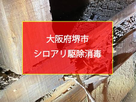大阪府堺市 シロアリ駆除消毒