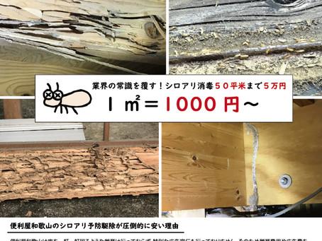 【害虫駆除】シロアリ被害は見えない所で広がります。
