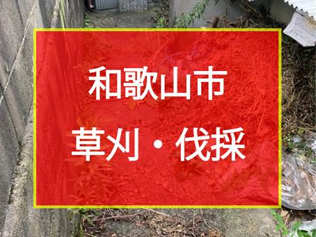 和歌山市 草刈・伐採