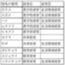 20190311213146pppp.png