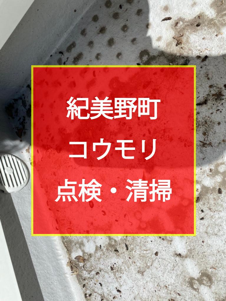紀美野町 コウモリ点検・清掃