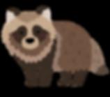 animal_tanuki.png