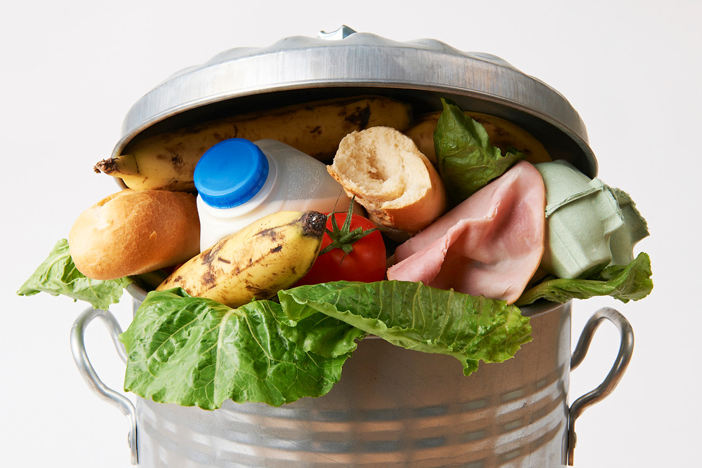 food waste defense safety consulting regulatory violations environment