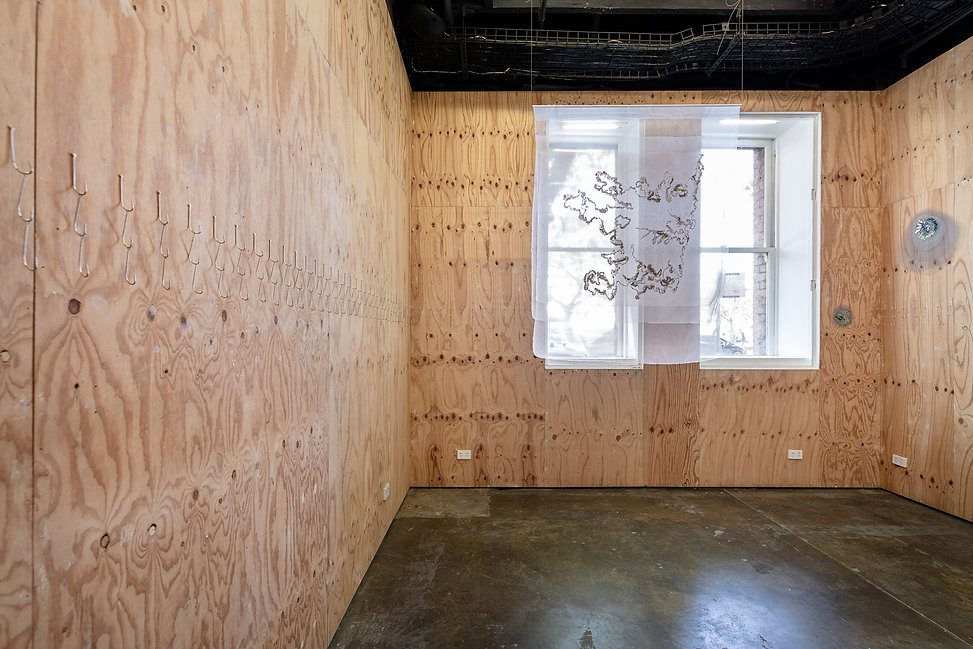 Artspace-PAS-Install-Nov 2020-web-6.jpg