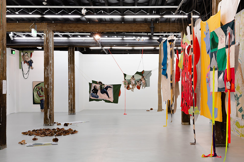 Artspace-NSWVAEF-Install-Nov 2020-web-2.