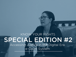 Know Your Rights Special Edition #2