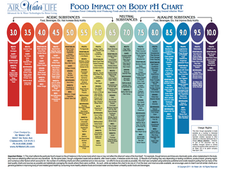 Food Impact on Body PH