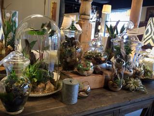 Garden Shop | Coming to ATL!