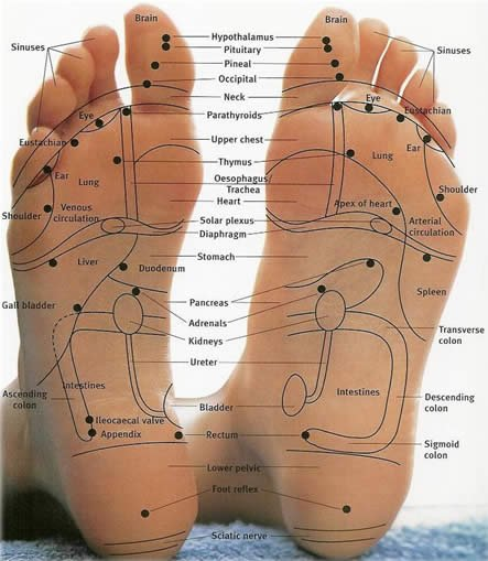 The Foot Chart