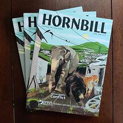 Hornbill - Human Wildlife Conflict