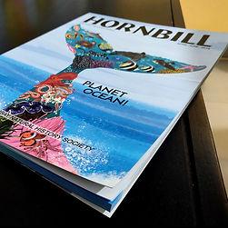 Hornbill - Planet Ocean