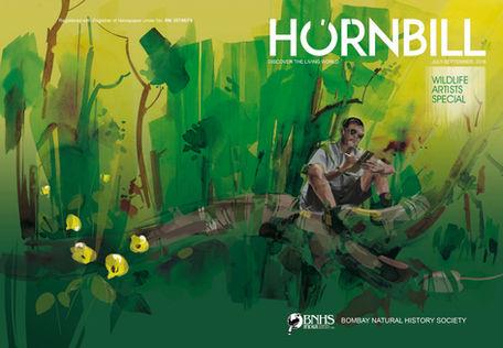 Hornbill - Wildlife Artist's Special Issue
