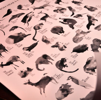 The Mammals Poster