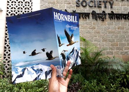 Hornbill - Central Asian Flyway - Special Issue