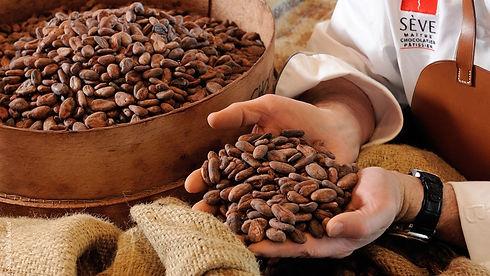 lyon-food-cocoa-beans-seve-studio-Erick-Saillet.jpg