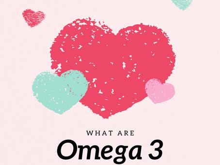 The Essential Guide to Omega 3 Fatty Acids