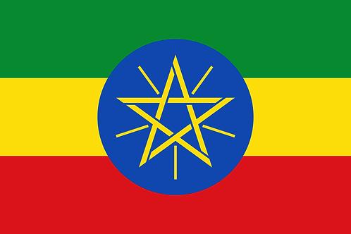 Ethiopia Yirgacheffe Grade 1 Birhanu Wote Natural