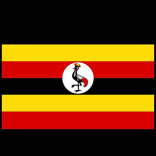 UGANDA RWENZORI-KISINGA NATURAL