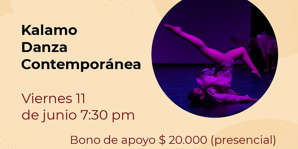Presencial:  Kalamo Festival de Danza contemporánea Libélula Dorada 2021|   (3)
