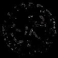 Logo_Libélula_Altanegro.png