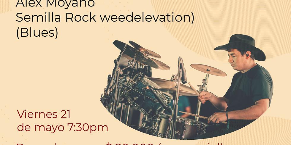 Presencial: Alex Moyano Semilla Rock(weedelevation) en vivo en el Festival de Blues & Jazz Libélula Dorada 2021|