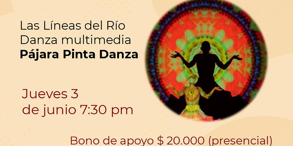 Presencial:  Pájara pinta Festival de Danza contemporánea Libélula Dorada 2021|  (1)