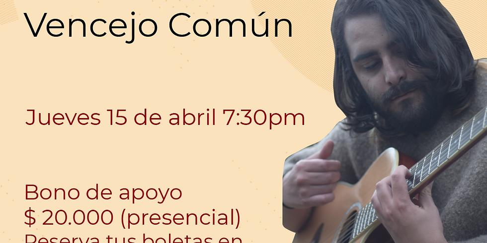 Presencial: Vencejo común en vivo en el Festival de Blues & Jazz Libélula Dorada 2021