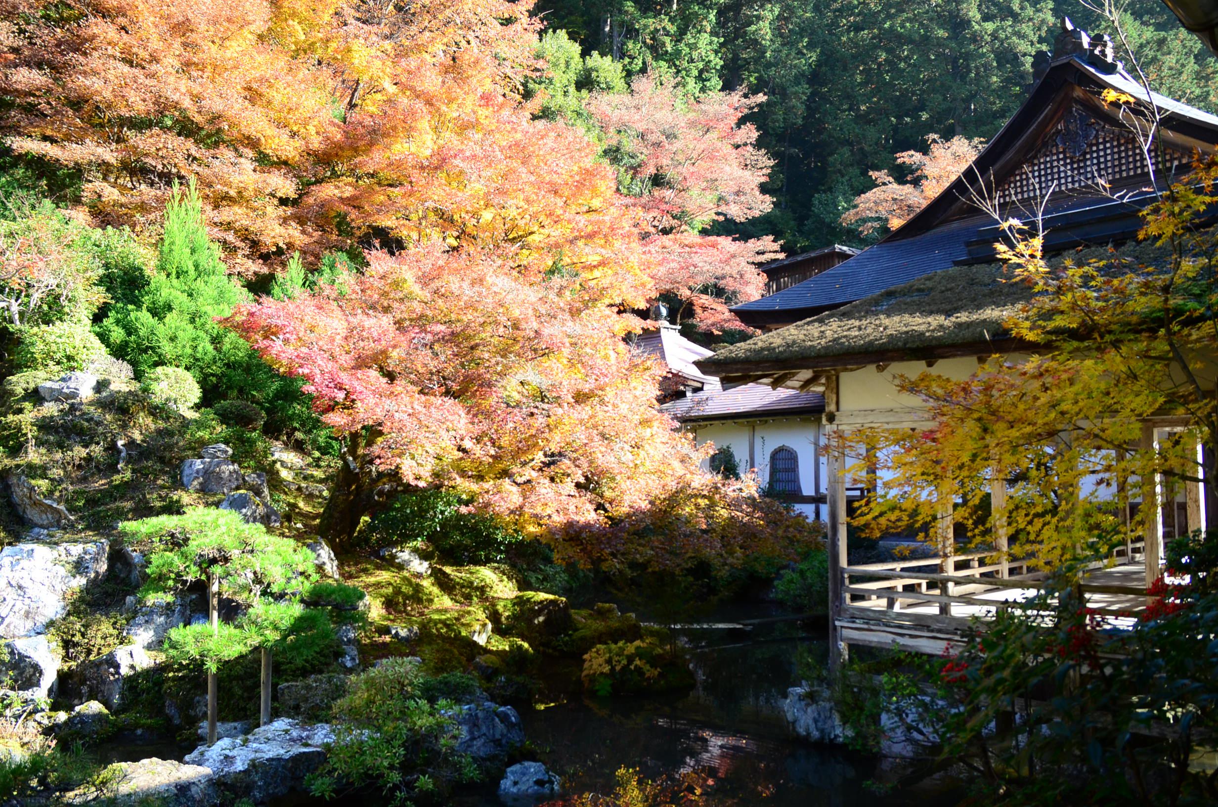 Peaceful Zen temple