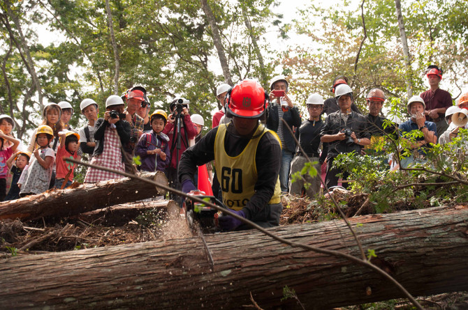Lumberjack Championships
