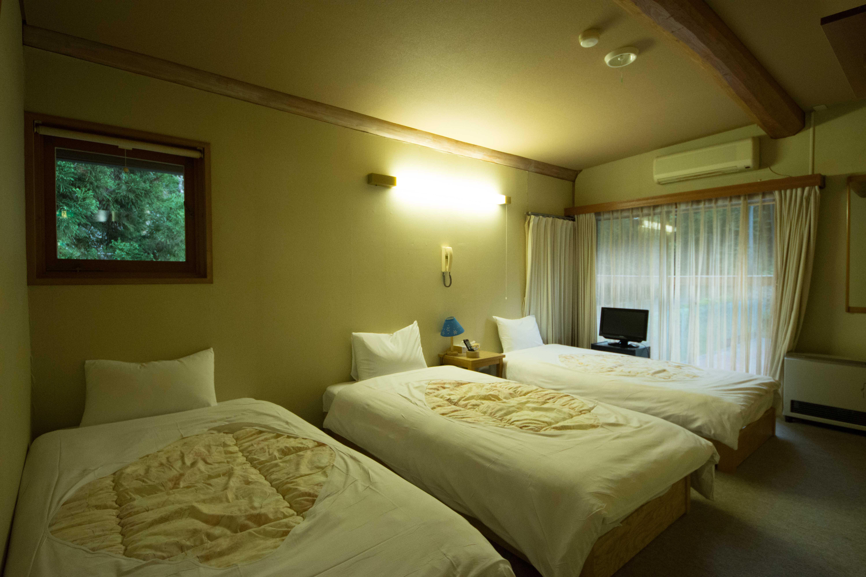 Western-style Triple Room