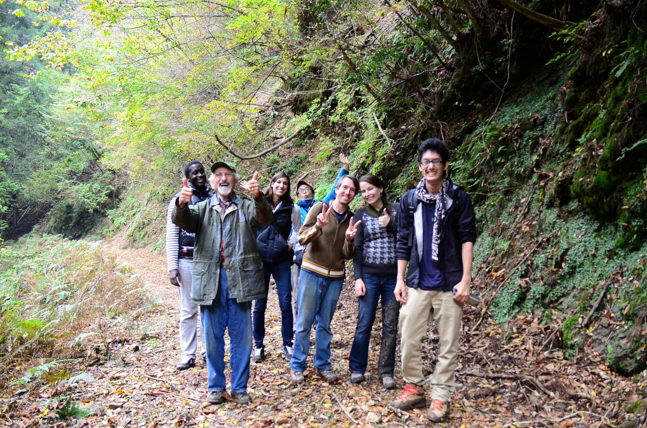Cypress tree hiking trail, Kyoto