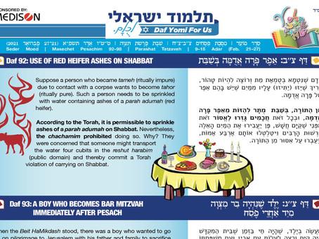 Talmud Israeli, Hebrew-English 384