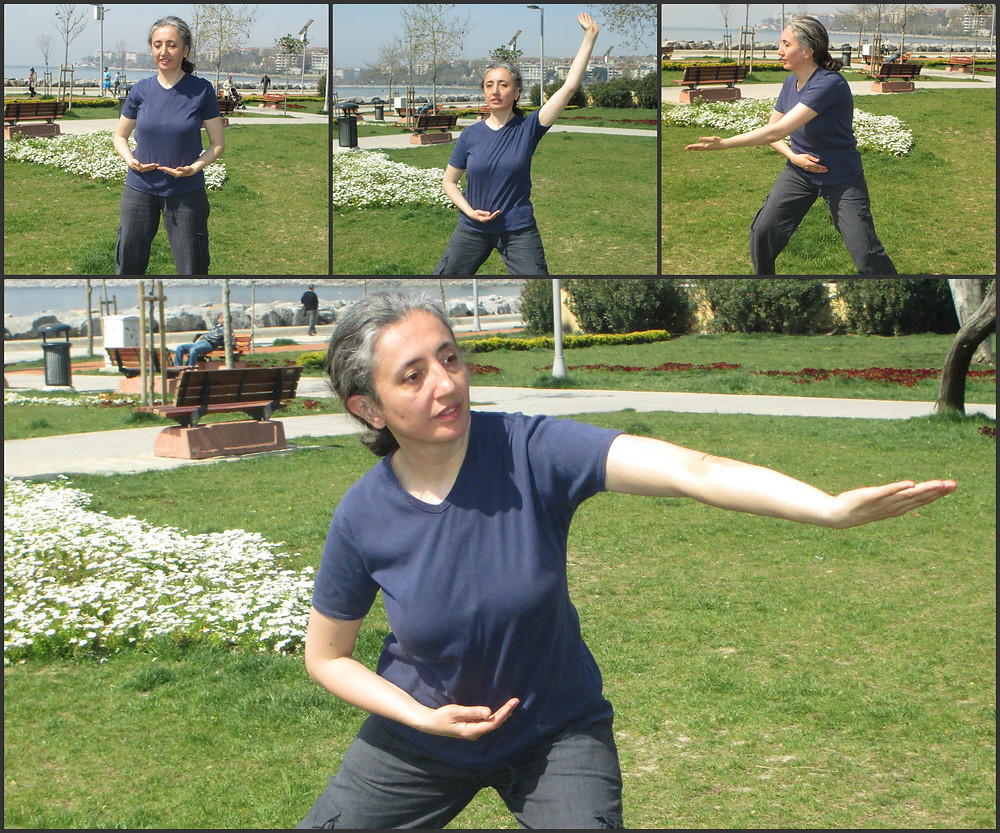 Collage qi gong park.jpg