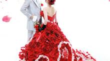 オススメ♪ステラデリベロのドレス