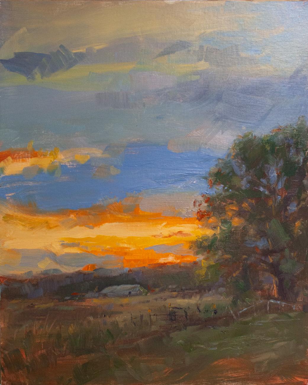 Fort Collins Sky