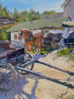 Cart-befor-the-Horse